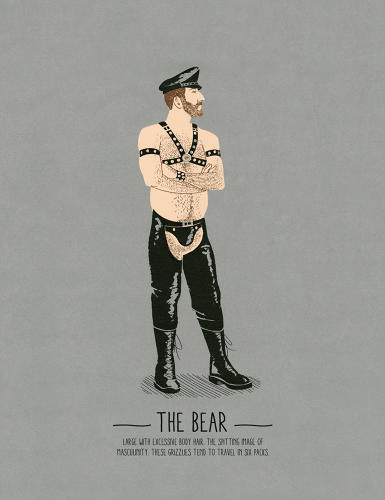 <p>&quot;Large, with excessive body hair. The spitting image of masculinity. These grizzlies tend to travel in six packs.&quot;</p>