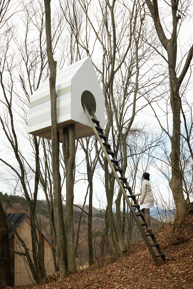 In a japanese forest a treehouse for birds and people co design business design - The giant slide apartament ...