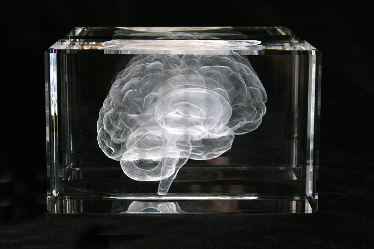 <p>Artist Katharine Dowson used her own MRI scans to laser a 3-D representation of her brain inside a glass block.</p>