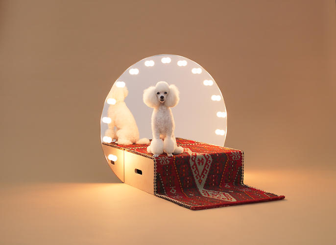 <p>Konstantin Grcic's piece for Teacup Poodles is a natural extension of a truism: Dogs are often the stars of their households.</p>