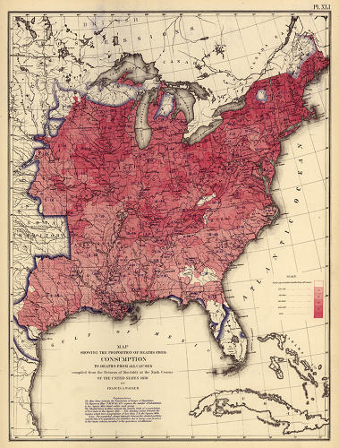 <p>John Snow was just one of many who used maps to investigate the sources of epidemics in the 19th century. Walker mapped the incidence of consumption and other diseases in the hopes of identifying patterns--and by extension the source--of contagion.</p>
