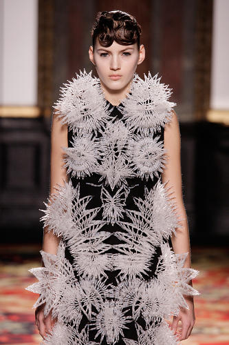 <p>For example, this image shows a dress spangled with tiny exoskeleton-esque fractals.</p>