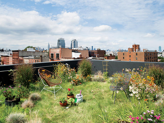 <p>Located in Williamsburg, Brooklyn, this row-house infill building is the home of Werner Morath, a partner in the architecture firm LoadingDock5. To minimize costs, Morath acted as both architect and general contractor, which allowed him to innovate spontaneously onsite. The green roof has approximately eight inches of soil and absorbs rainwater runoff.</p>