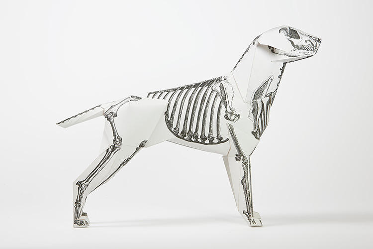 <p>Phoebe Richardson gave Gerald a skeletal look with lots of trial and error--lining up the bones with the cut, fold, and paste pattern was tough.</p>