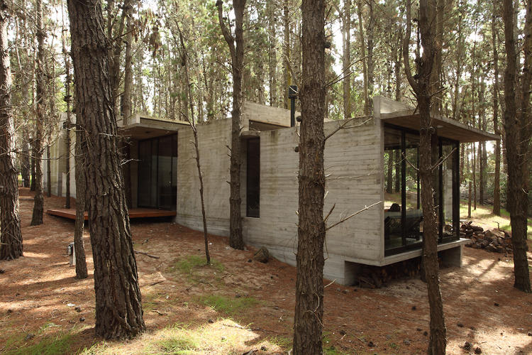 <p>The AV house straddles a gently sloping hill in Mar Azul's small forest. The architects were careful to preserve the natural conditions of the site and allow the forest floor to rub up against the concrete fame.</p>