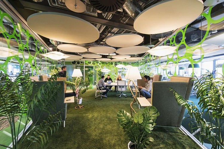 <p>The GREEN floor is covered with a carpet of synthetic grass and sprinkled with live plants.</p>