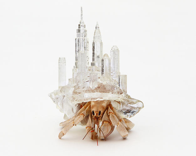 <p>Japanese artist Aki Inomata has designed a series of deluxe seashells that would be the envy of any hermit crab.</p>