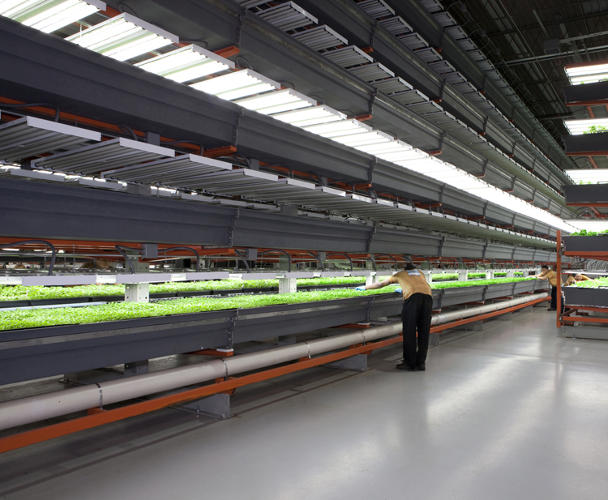 <p>It's the largest indoor aquaponic farm in the country.</p>