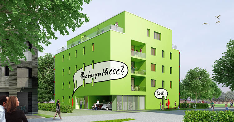 <p>Known as the BIK, this building, which has 15 apartments, is powered entirely by algae.</p>