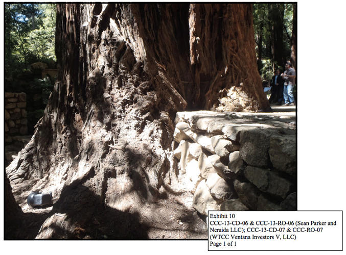 <p>And stone walls that prevent trees from growing. Parker paid more than $2 million in fines.</p>