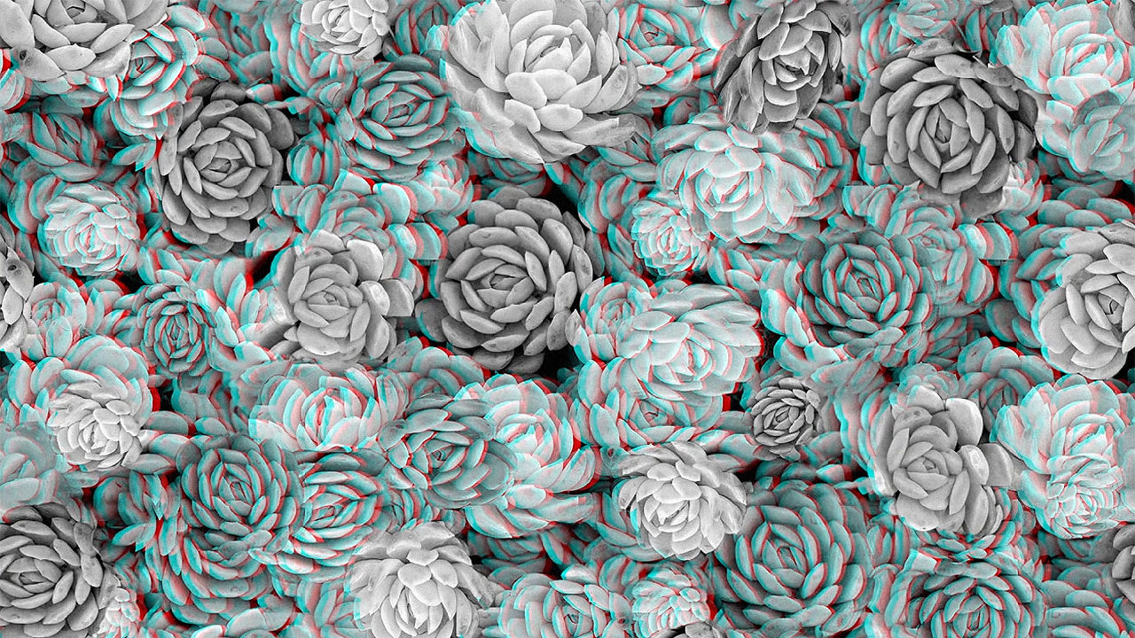 stare at your walls all day with this crazy 3 d wallpaper