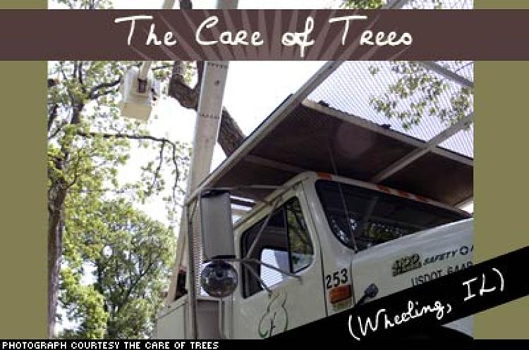 <p>Safety is a key priority for this professional arboricultural firm. This tree hugger lends its time to helping draw up preservation plans, as well as talking in local garden clubs, while always keeping its mind on the safety of its 300 employees, 65,000 clients, and the trees it hopes to preserve.</p>