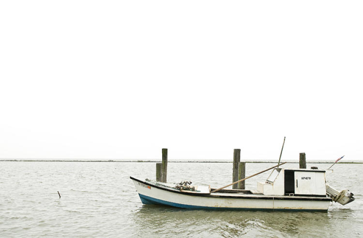 A lone boat sits in the Bay as almost everyone that can oyster is out for the day raking the beds for their 20 bag limit. The boats work in two-man crews, one to rake, one to separate legal catches, replace the small sized oysters, and bag the rest.