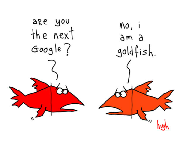 "A goldfish can just be a goldfish. In the tech industry every start up wants to become the next Microsoft or a Google, but that course is not for everyone. Not everything needs to be big to be great. ""We don't need to always reference something from before,"" MacLeod says."