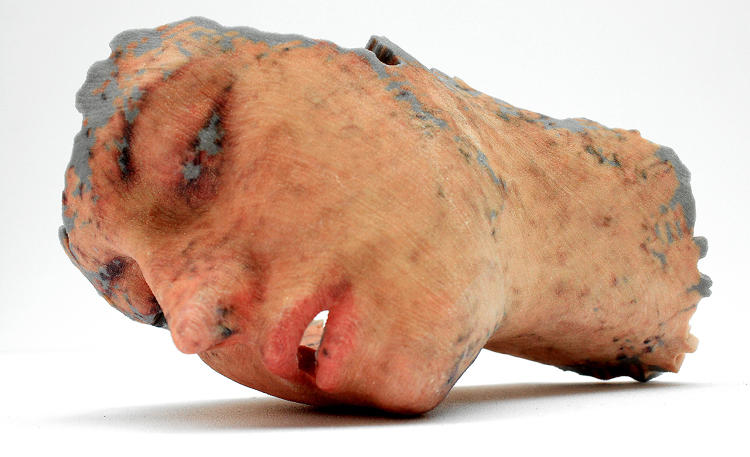 <p>Barnshaw named her sculptures Replicants in honor of Ridley Scott's 1982 film<em> Blade Runner</em>. The sculptures are all hairless as the software Barnshaw used failed to understand follicles.</p>