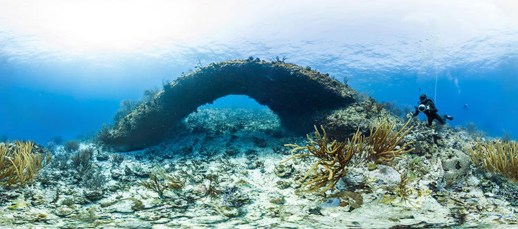 <p>These photos were analyzed with computer vision techniques to determine the structure of the reefs and to pinpoint damage to them.</p>