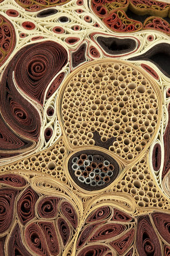 <p>In quilling, strips of paper are rolled, shaped, and glued together into often quite elaborate designs.</p>