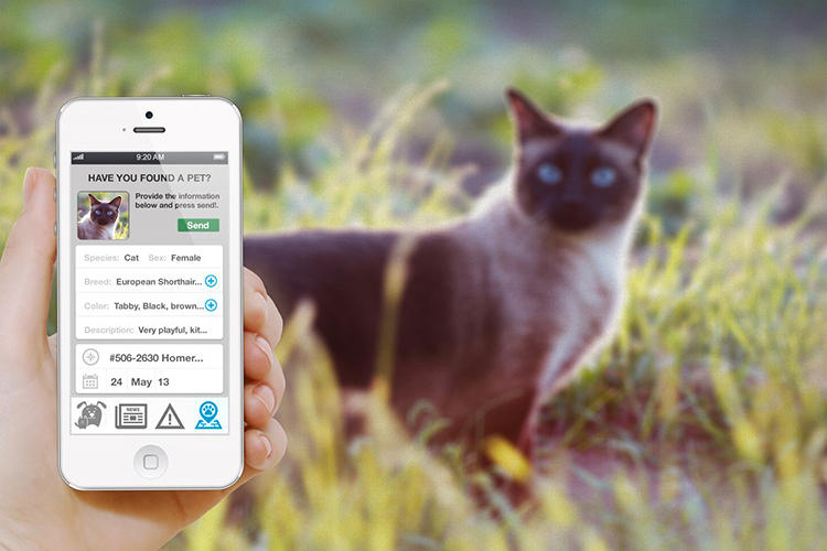 <p>Pip is an alternative: it records and classifies every feature of a dog's or cat's appearance.</p>