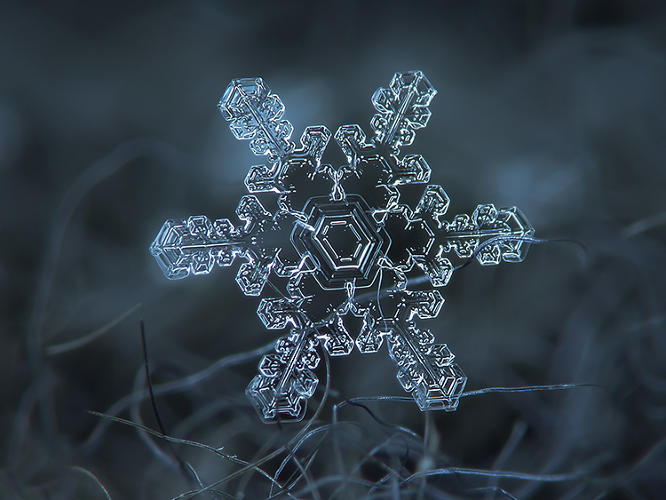 <p>Kljatov's obsession began one day when he came across a couple of photos of snowflakes online. He'd owned a digital camera for several years, but hadn't ventured beyond the usual subjects.</p>