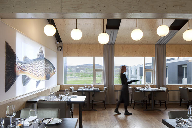 <p>This is a hotel for a &quot;traveler who doesn't want his creature comforts interrupting the experience of, in this case, Iceland's otherworldly natural wonders: lava flows, drifting continental shelves, the Northern Lights, glaciers, waterfalls, and hot springs,&quot; the designers <a href=&quot;http://architype.org/project/ion-hotel&quot; target=&quot;_blank&quot;>write</a>.</p>