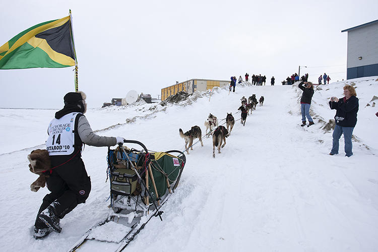 "<p>The Iditarod, an annual tradition since 1973, bills itself as the &quot;Last Great Race on Earth.""</p>"