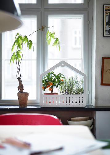 <p>It's also trendier than a lot of Ikea pieces. Note this terrarium.</p>