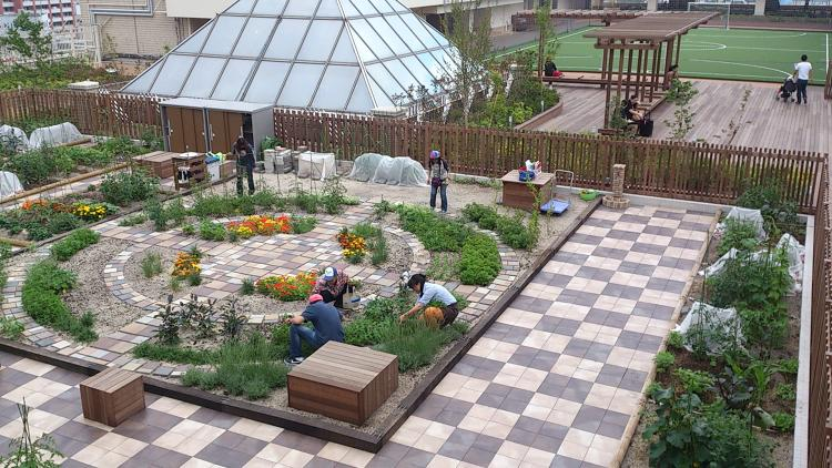 <p>In Tokyo, locals who don't have the time or space to garden at home can rent out a plot in a series of urban farms on top of train stations.</p>