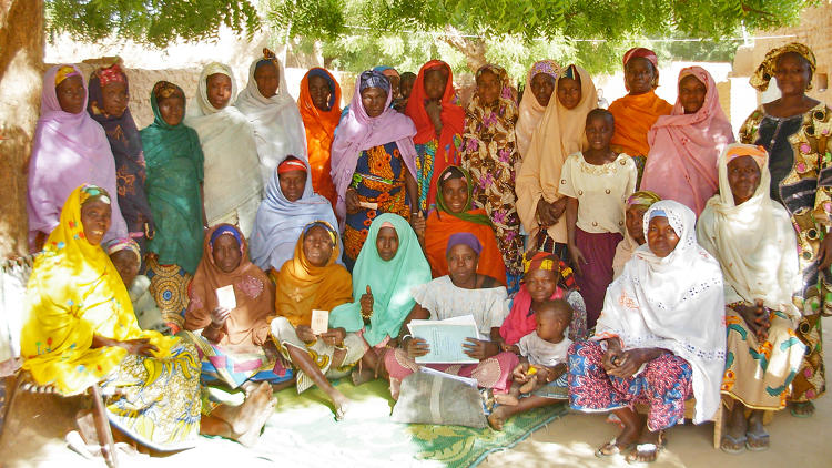 <p>Women's groups in West Africa are integral to the growing and harvesting of the moringa used in Kuli Kuli's bars.</p>