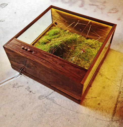 <p>Brooklyn duo <a href=&quot;http://www.hbcollaborative.com/about.html&quot; target=&quot;_blank&quot;>Huy Bui</a>'s terrarium-turned-coffee table looks like furniture from the house of the future.</p>