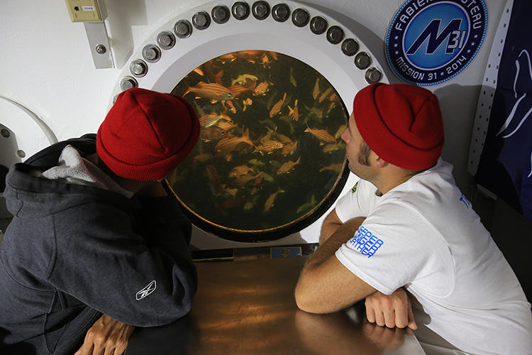 <p>The group looked at ocean acidification, pollution, fish behavior, and even the impact of sleep on humans living underwater.</p>
