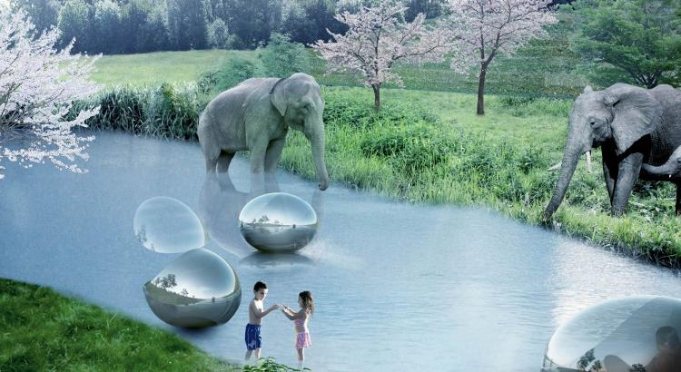 <p>Bubble-like boats allow visitors to float through sections of the park.</p>