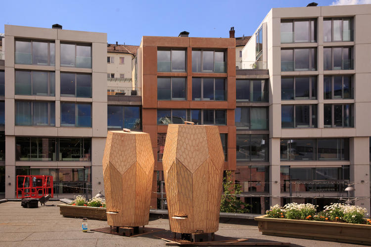 <p>They're designed to make Oslo a little more hospitable to flying insect friends.</p>