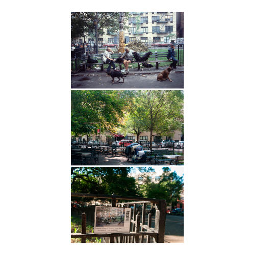 <p>SW corner Tompkins Square Park. Relaxing with the dogs.</p>
