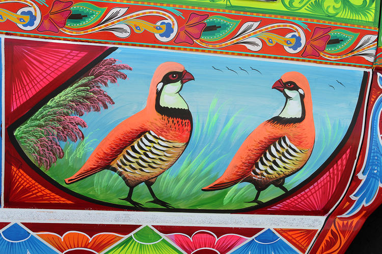 <p>A pair of partridges decorate this van painted in 2014 by Haider Ali.</p>