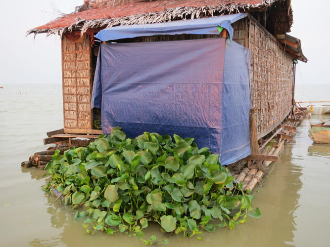<p>In the Cambodian village of Prek Toal, everything floats.</p>
