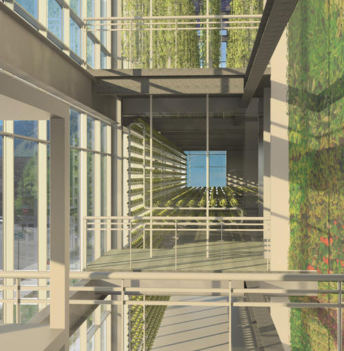 <p>On a thin slice of vacant land next to a parking lot, a startup called Vertical Harvest recently broke ground on a new three-story stack of greenhouses that will be filled with crops like microgreens and tomatoes.</p>