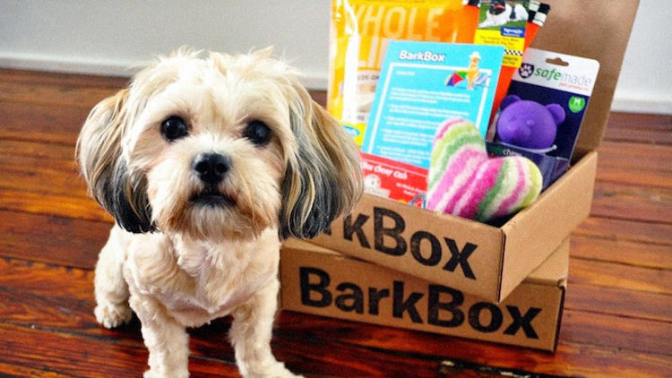 <p>How much for that doggie's box?</p>