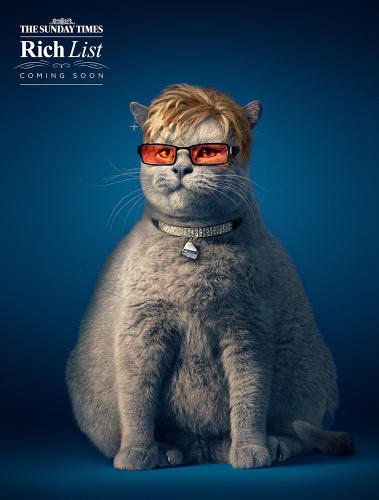 <p><a href=&quot;http://www.fastcocreate.com/3030125/see-a-feline-richard-branson-in-the-fat-cats-campaign&quot; target=&quot;_self&quot;><em>The Sunday Times</em> Rich List 2014</a>, The campaign, created by Grey London</p>