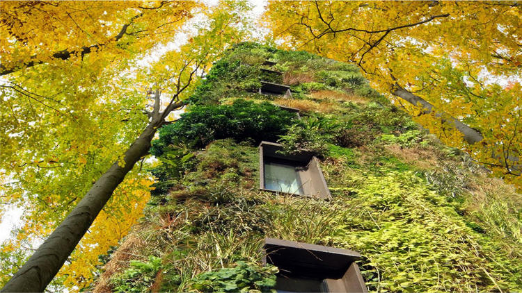 <p>&quot;Imagine living with nothing but green around you. Imagine growing flowers or tomatoes on your façade,&quot; says Raimond de Hullu, the architect.</p>