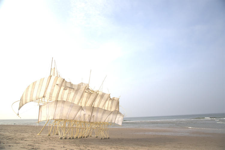 <p>For the past 25 years, Dutch artist Theo Jansen has dedicated his life's work to building an entirely new life form: the Strandbeest.</p>