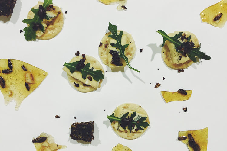 <p>By making crickets look fancy, maybe they'll become less revolting to the American palate.</p>
