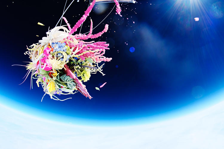 <p>He also configured six GoPro cameras into a ball and sent it up with the plants to capture surreal 360-degree photos.</p>