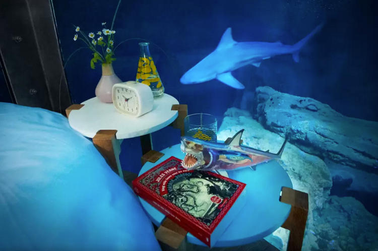 <p>Spend a night surrounded by sharks in the Aquarium de Paris, courtesy of Airbnb</p>