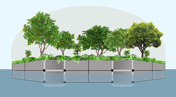 <p>New York City's newest urban farm will look different from most: It's on a boat.</p>
