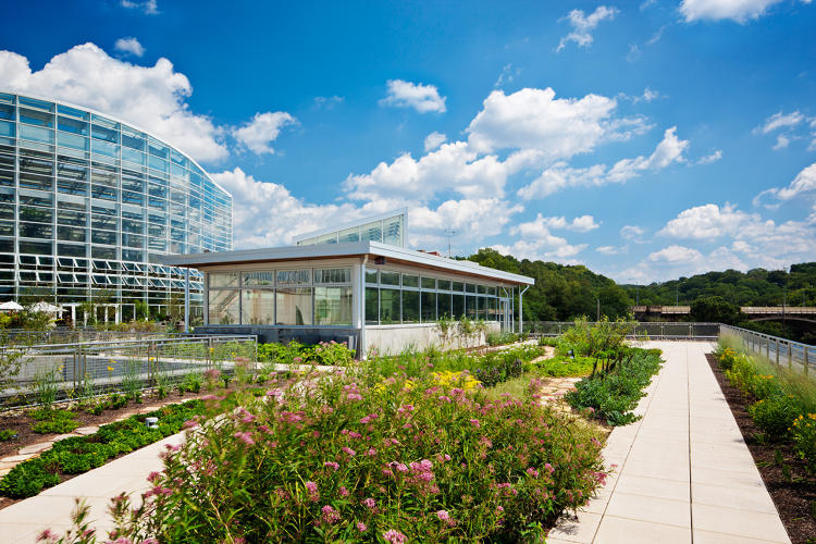 <p>Center for Sustainable Landscapes</p>