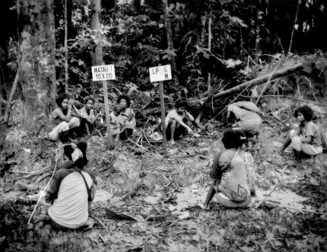 <p>Batek Negrito women rest beside a muddy logging road in the heart of the Batek Negrito homeland that had been surveyed and marked for logging in the last, very narrow strip of old-growth rainforest that still existed, sandwiched between Taman Negara National Park and massive oil palm plantations.  All the land here less than a generation ago had also been old-growth rainforest and the homeland of the Batek.  Near Kuala Koh, Kelantan, Malaysia. Now this parcel of rainforest has also been clear-cut and terraced in preparation for a new oil palm plantation converting the most diverse ecosystem on the planet, a carbon sink absorbing greehouse gases, into a monoculture cash crop wasteland devoid of the wildlife upon which the Batek depend for sustenance.</p>