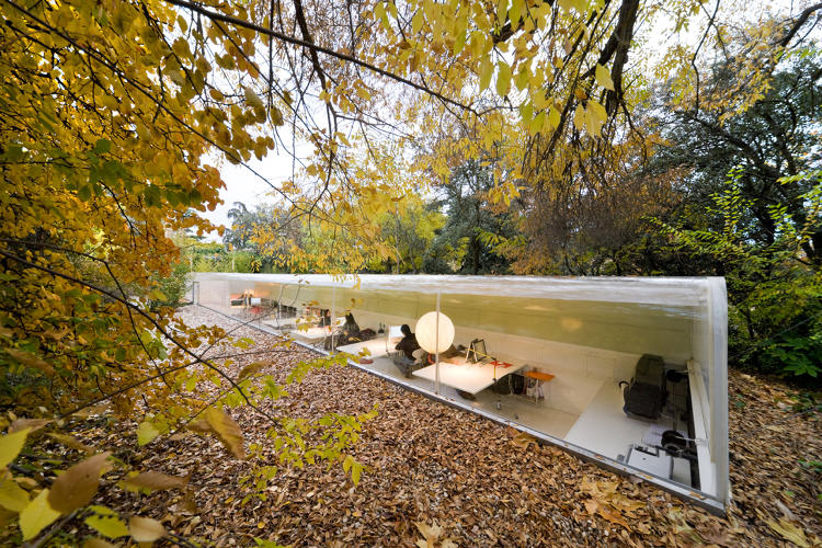<p>The architecture studio Selgascano made its office as transparent as possible so employees could work underneath the trees in downtown Madrid.</p>