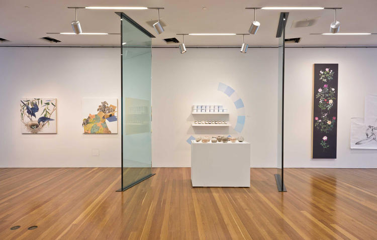<p>At the de Young museum, she explores questions about what belongs in San Francisco, whether it's a plant or another thousand software developers.</p>