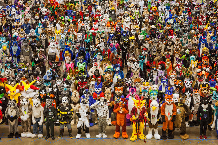 <p>Zoo, Anthrocon. Pittsburgh, Pennsylvania 2014</p>