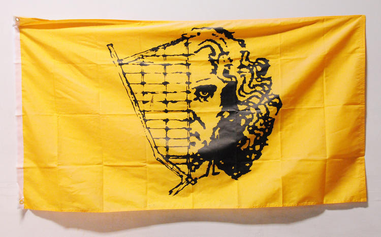 <p>Flag designed by Andrew Johnstone depicting the Man's head and Leonardo Da Vinci's face to celebrate the 2016 theme of &quot;Da Vinci's Workshop.&quot;</p>
